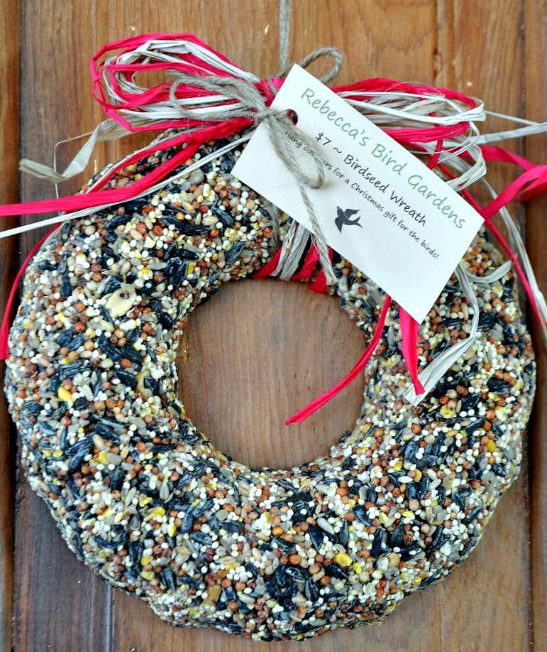 ¡No Olvide Los Pájaros! Ornamentos hechos en casa del alimentador del páj de <br> Primavera! Desenchufe sus hijos
