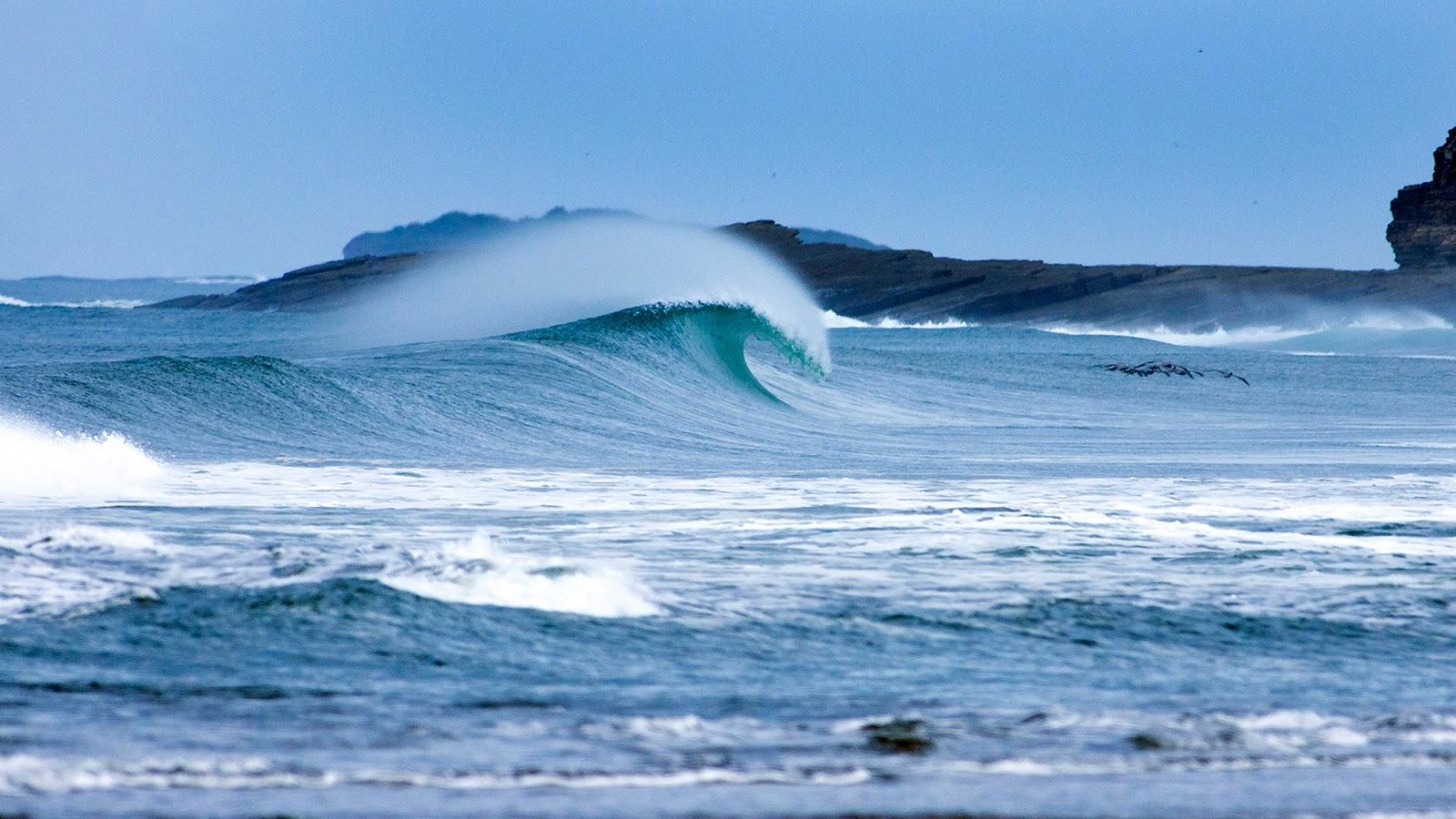 pico surf