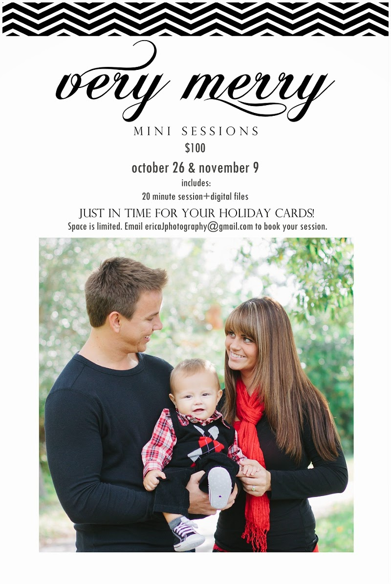 palm beach county holiday mini sessions