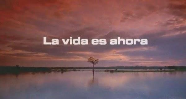sitio web charla besando en Algeciras