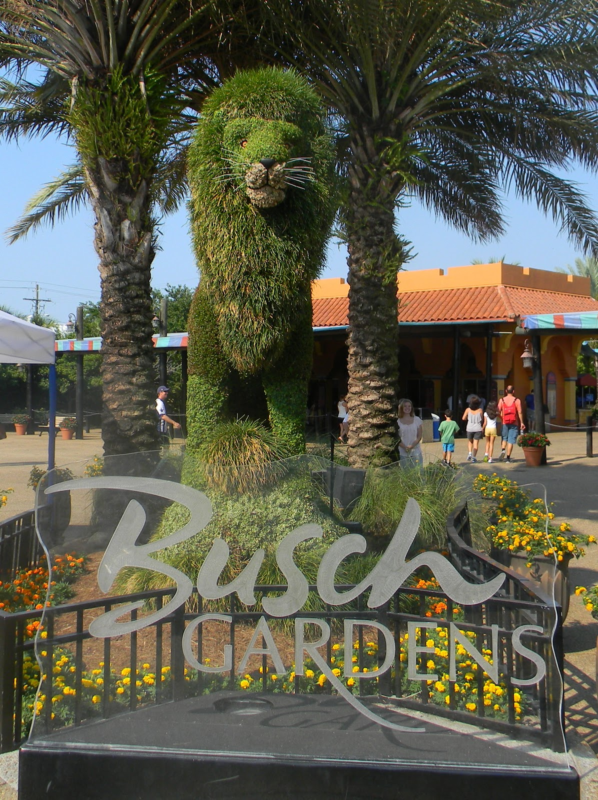 The unknown florida busch gardens tampa fl for Best day go busch gardens tampa