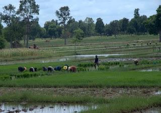 Ujrzeć Mekong i wrócić szlakiem Khmerów 105