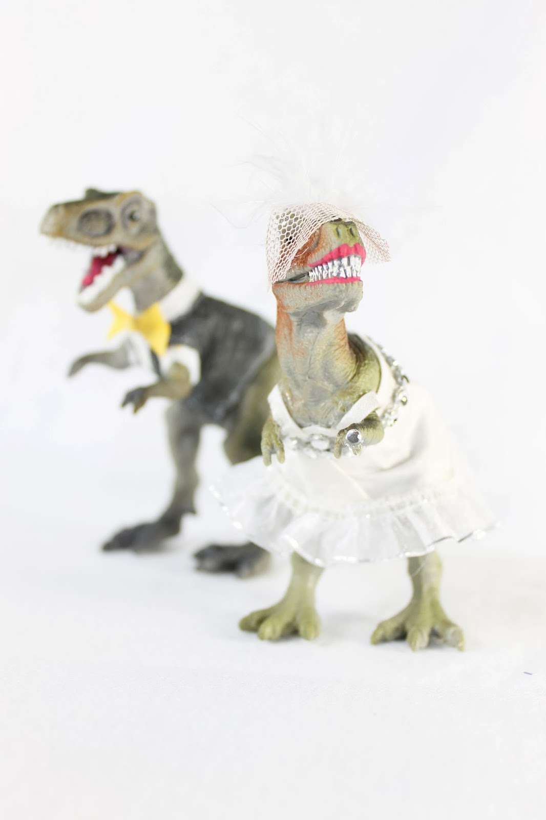 The ragged wren Dinosaur Wedding Toppers
