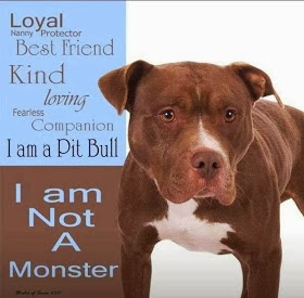 Pit Bulls are intelligent and loving beings. Please do not believe in the media hype.