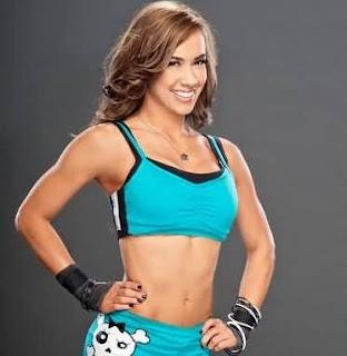 WWE AJ Lee Cool