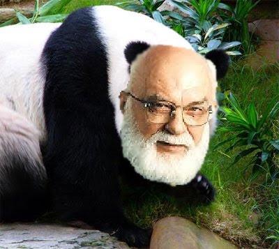 <b>Randi pandi</b> - randi-pandi