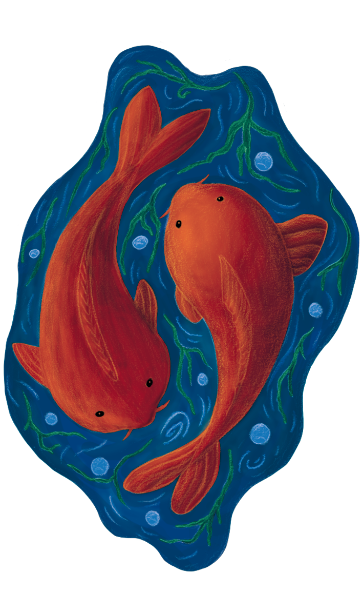 Carps - Jen Haugan Animation & Illustration