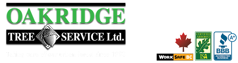Oakridge Tree Service ltd.