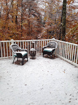 Old Forge Resident Donna Dutton Posts First Known Snow of Season