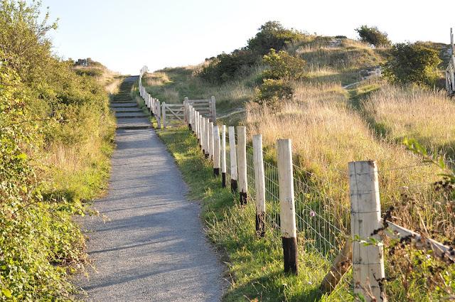 Path+to+Dover+White+Cliffs