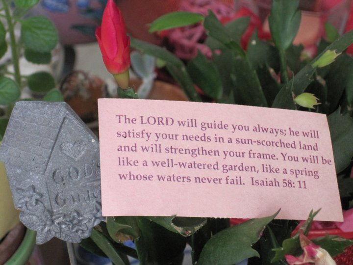 eyes on christ garden related bible verses