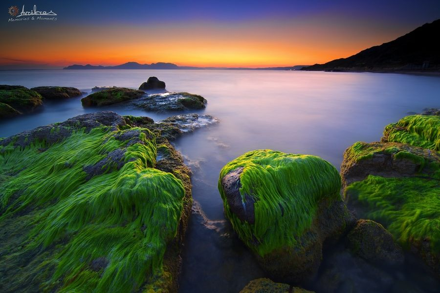 4. My nature green hair…! by AdithetoS