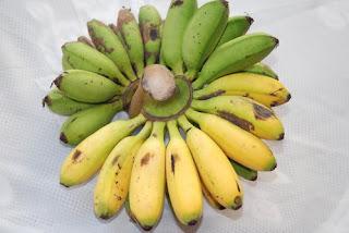 manfaat pisang mas