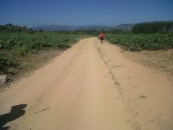 """""""El sendero, El Camino"""""""
