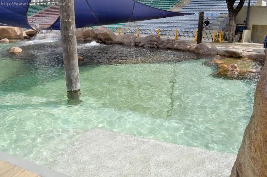 Lbd Onesies A Lifestyle Blog Swim Like A Mermaid At Manila Ocean Park