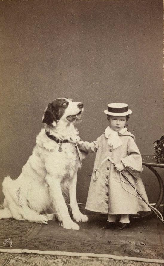 leggero amore cane generose dimensioni Paw Prints Sciarpa Scialle Donna CERBIATTO