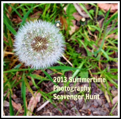 2013 Summertime Photography Scavenger Hunt