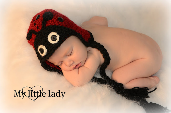 Little Lady Bug Hat