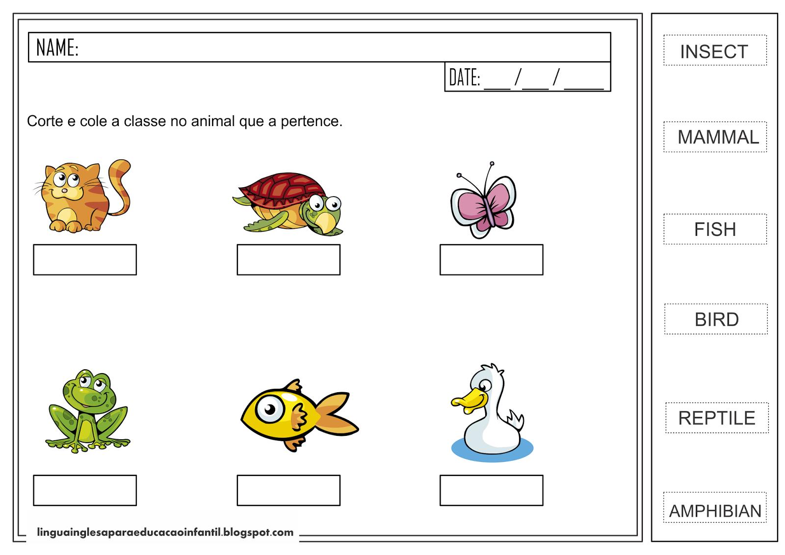 Atividade de Inglês para educação infantil - Classe dos Animais