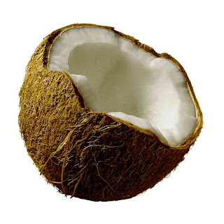 health_benefits_of_eating_coconut_fruits-vegetables-benefits.blogspot.com(14)