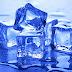 #IceBucketChallenge: Royal Crowns, Mammoths, Wild Boars [Video]