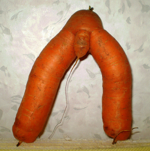 Latest Funny Pictures: Funny Carrots