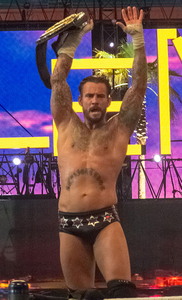 CM Punk WWE Champion