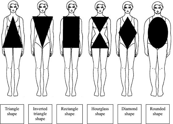 fashion   body shape