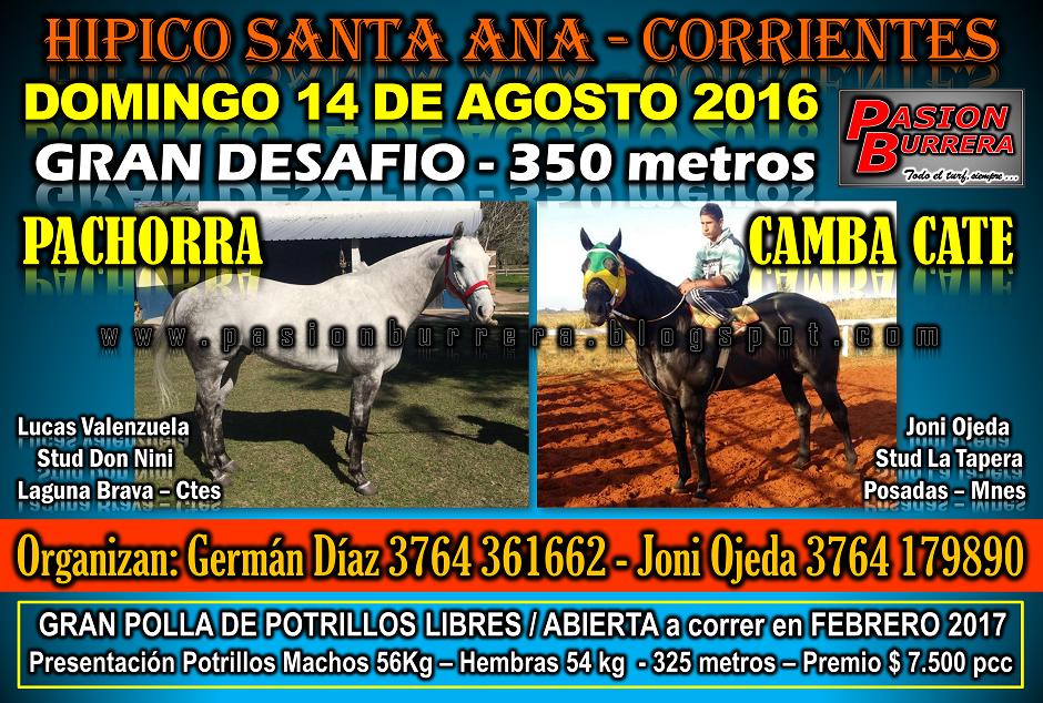 SANTA ANA - 14 AGOSTO - 350