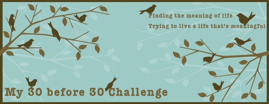 My 30 before 30 Challenge