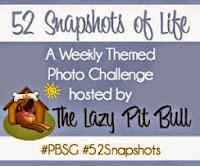 52 Snapshots of Life
