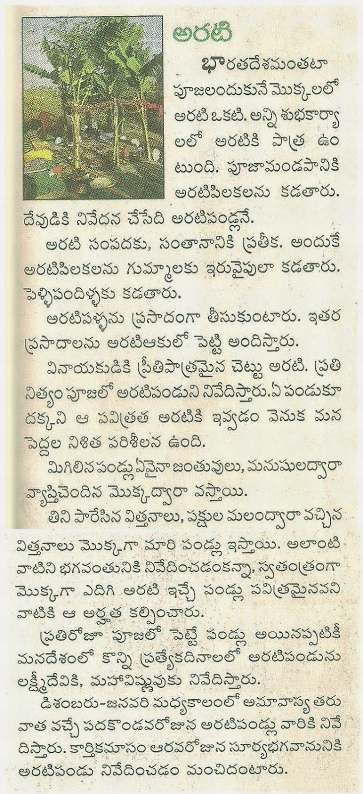 Essay on mango tree in telugu