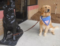 This golden retriever is sitting further from the black german shepherd stature. He is looking up and to the right, with a proud expresssion on his face. He is also wearing a blue Future Leader Dog bandana.