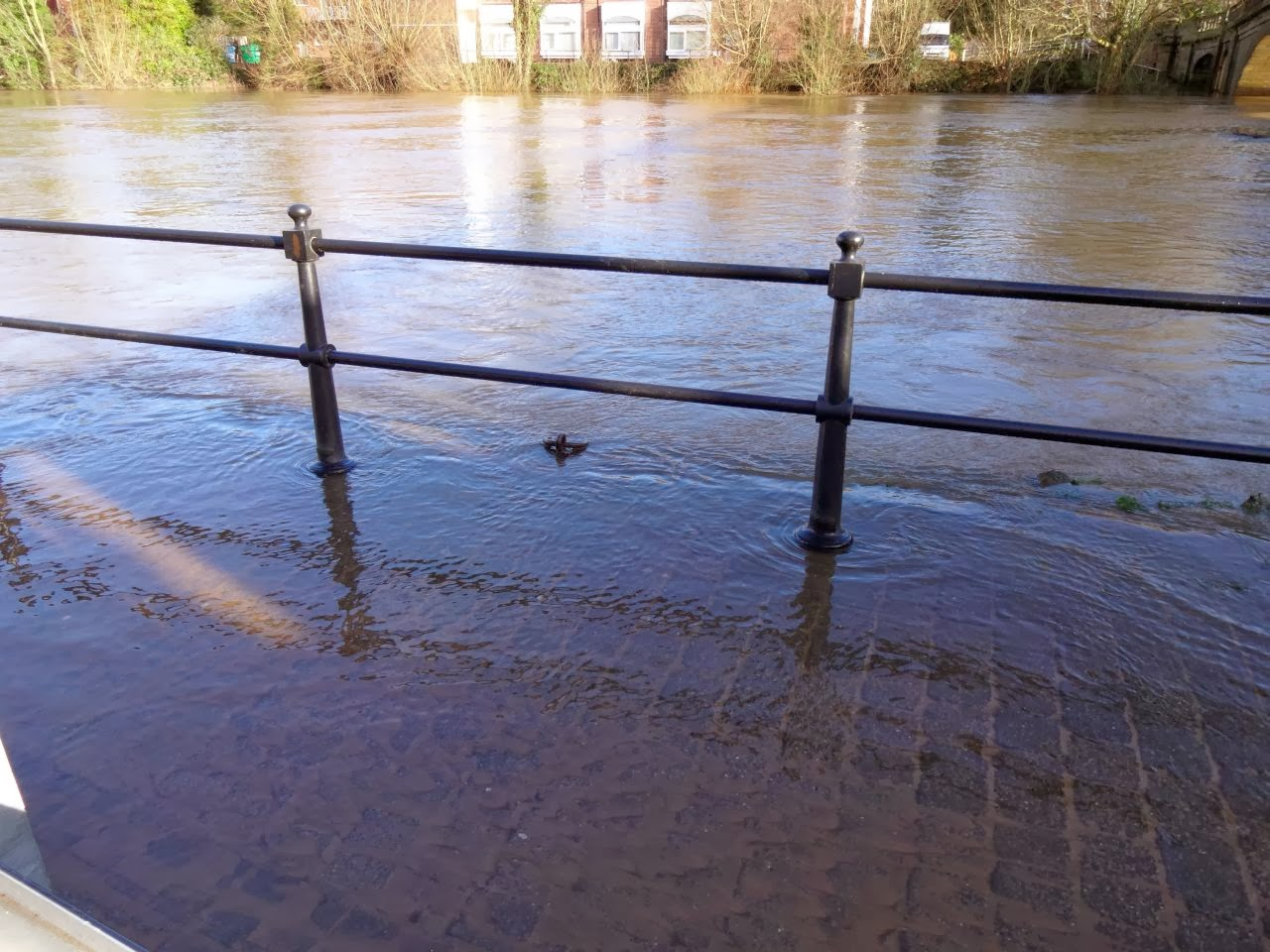 The river Severn breaching the banks at Severn Side North, Bewdley