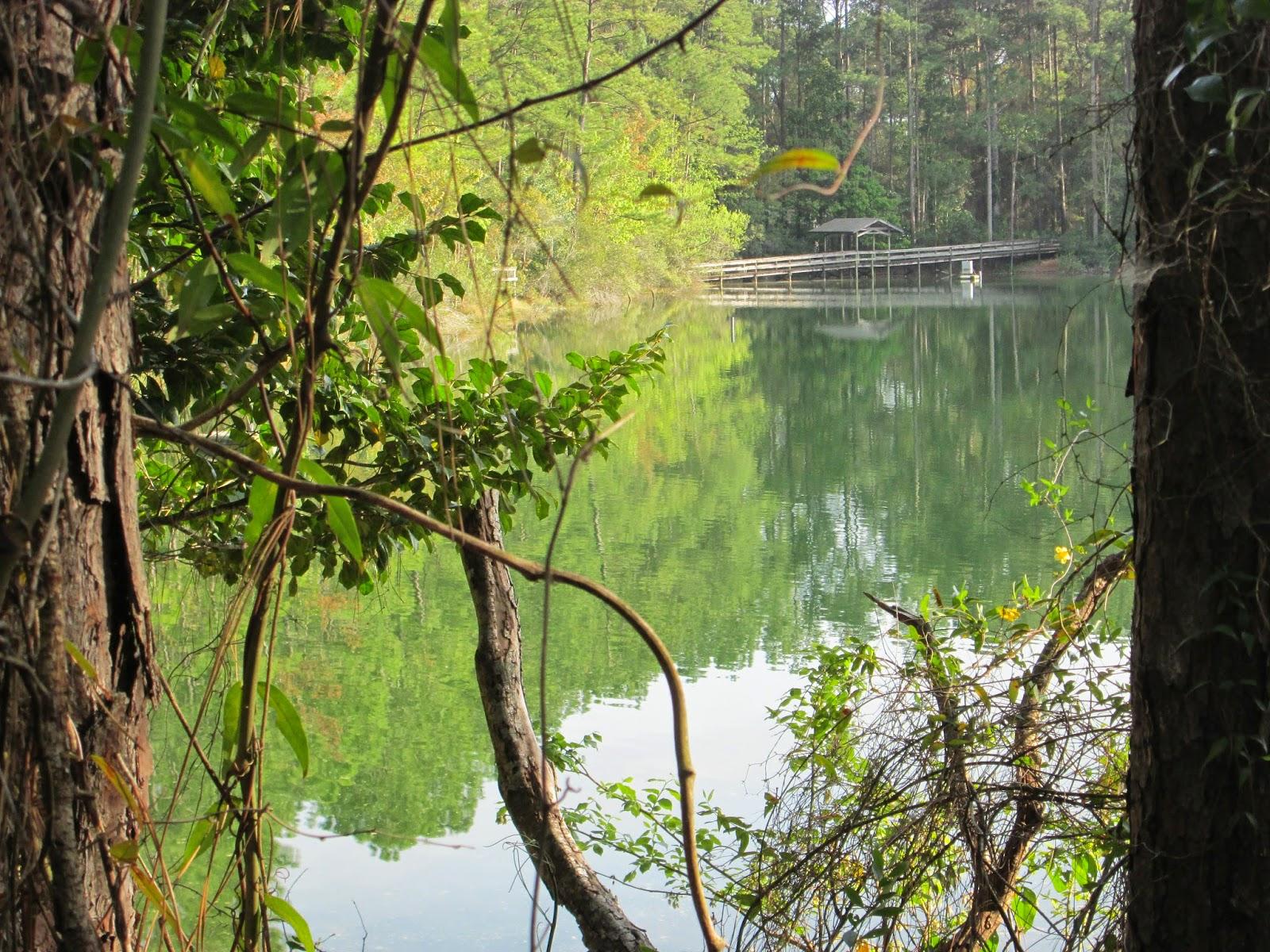 Bethesda Park, Jacksonville florida laceupandwalk.blogspot.com
