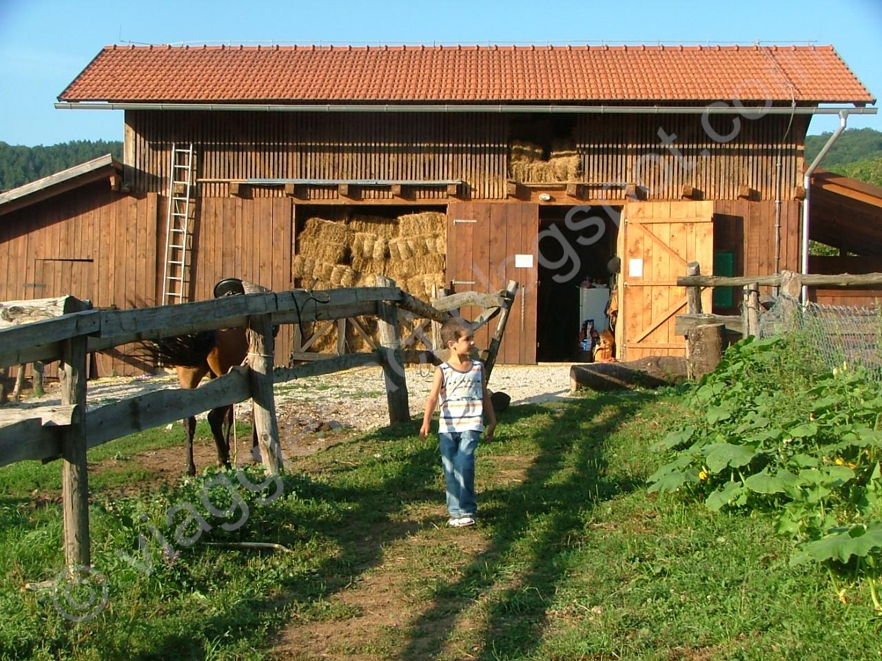 Viaggi e baci jelov klanac vacanze in ranch for Rimodella a forma di ranch della casa