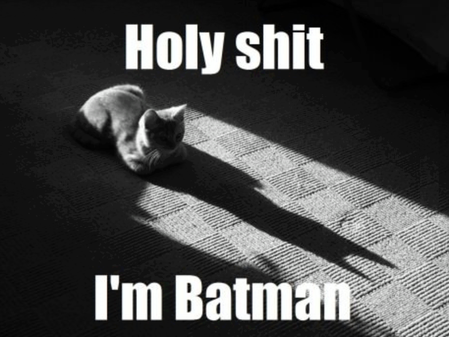 I Am Batman!
