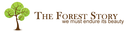 The Forest Story