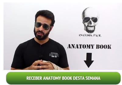 Curso Box Anatomia Fácil