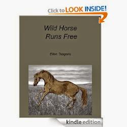 Wild Horse Runs Free