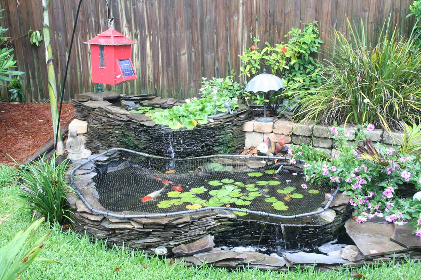Koi pond garden landscape design for Above ground koi fish pond