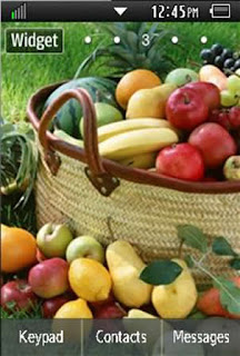 General Healthy, Vegetables, Fruits Samsung Corby 2 Theme 3 Wallpaper