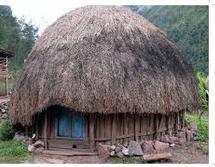 Desain Rumah Adat Papua Bali Jawa Aceh dan penjelasannya
