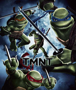 Poster Of TMNT (2007) In Hindi English Dual Audio 300MB Compressed Small Size Pc Movie Free Download Only At worldfree4u.com