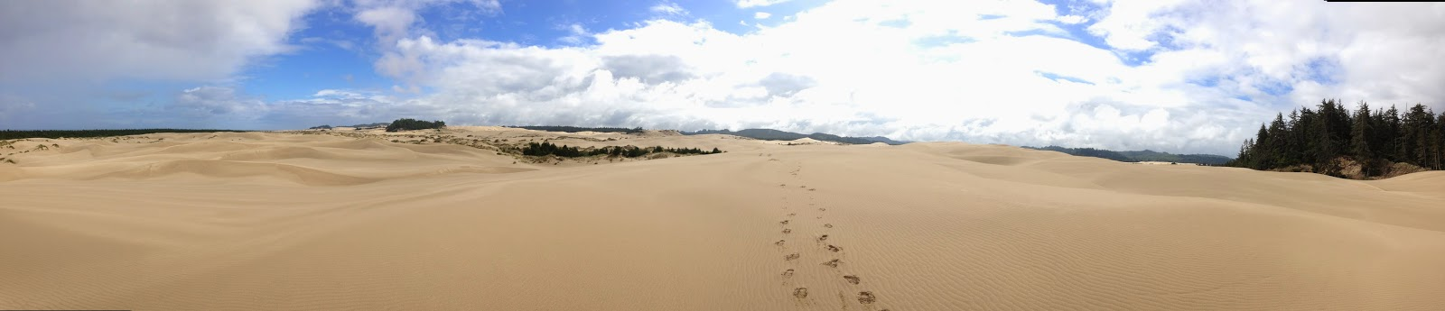 panorama oregon dunes