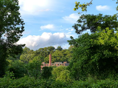 the Ripening, photo a day, old factory, building, trees, green