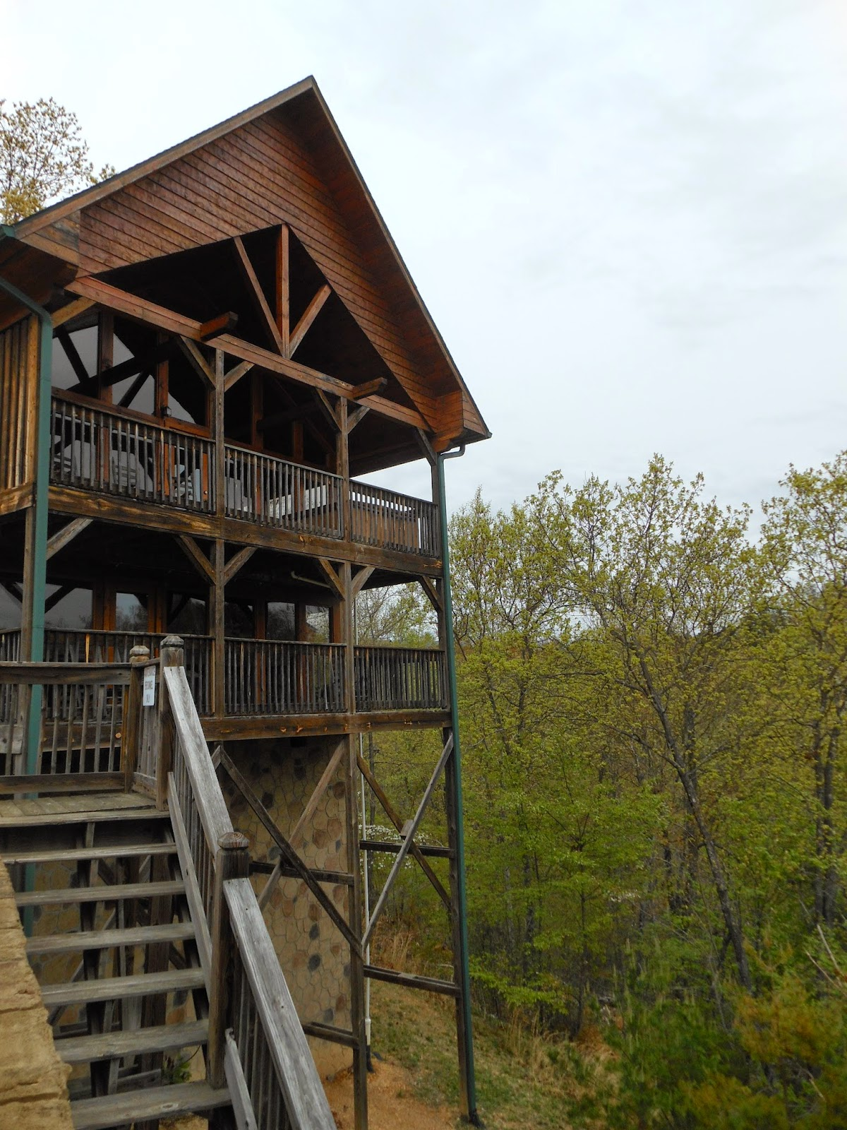 beary special dollywood cabin pigeon forge