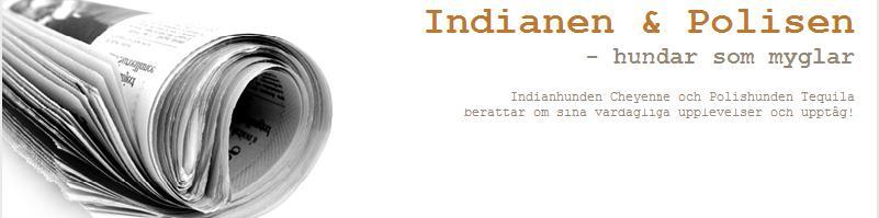 Indianen & Polisen