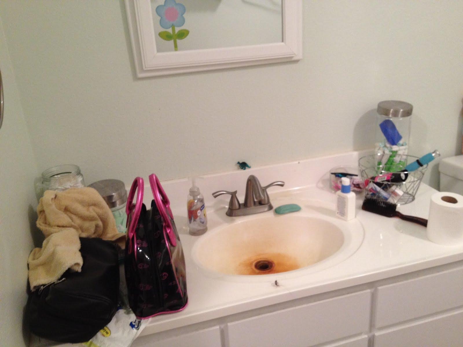 Loftee ideas bathroom clean up for Bathroom cleaning ideas
