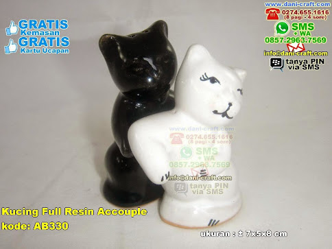 Kucing Full Resin Accouple